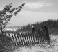 myrtle_beach_dunes_960x854_charliej
