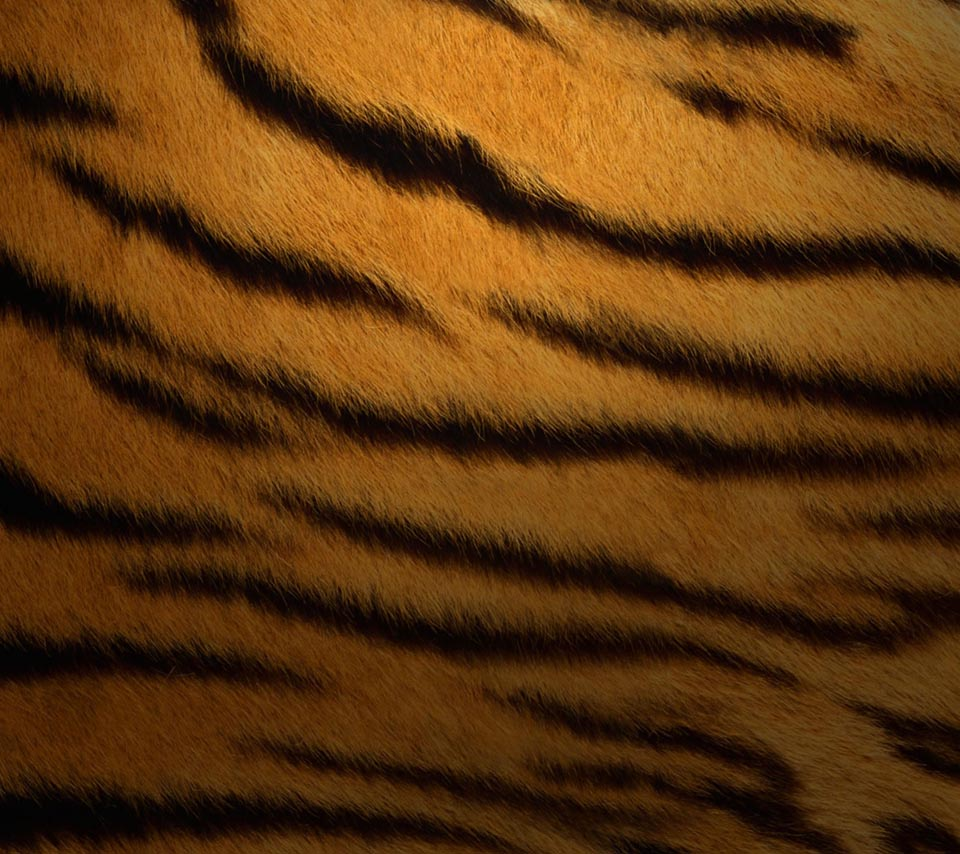 pattern_tiger