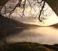 nature_loch_lomond